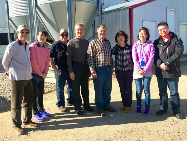 Grain Trade Team