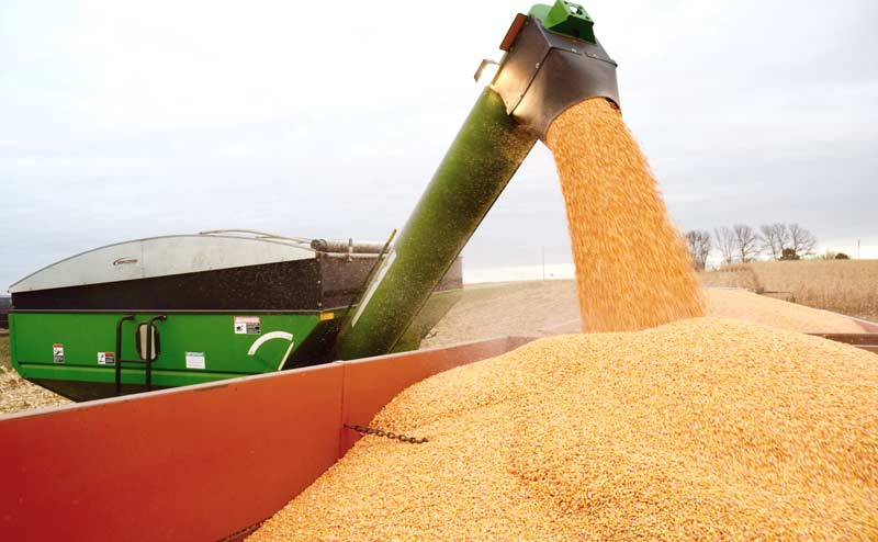Auger grain cart