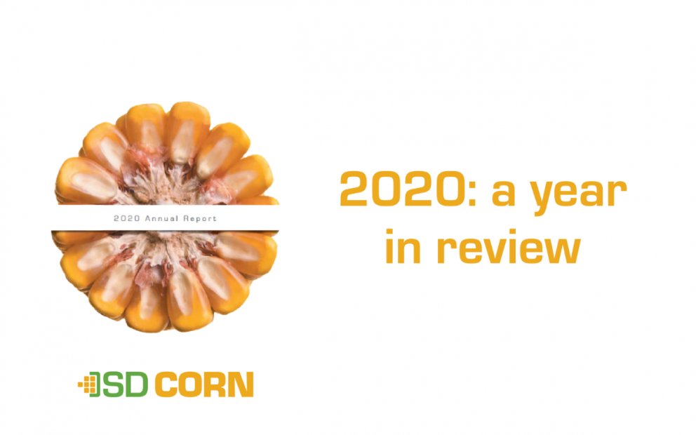2020 year in review blog image revamped for new site