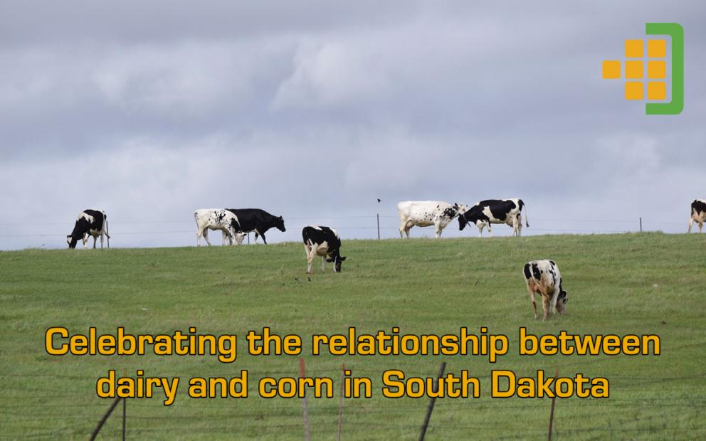Dairy Month Blog Image v2