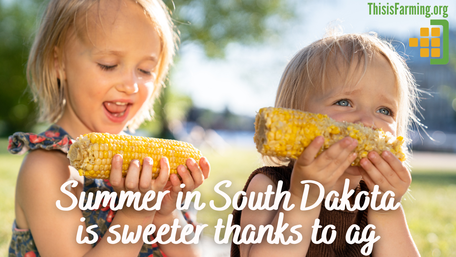 Summer in South Dakota is sweeter thanks to ag