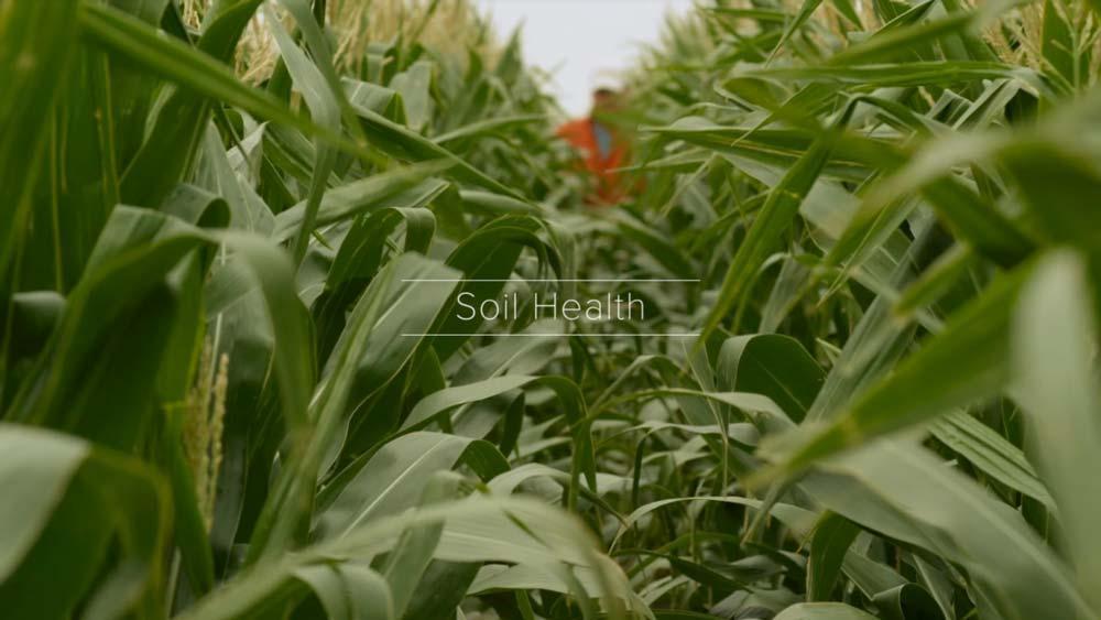 Soil health this is farming