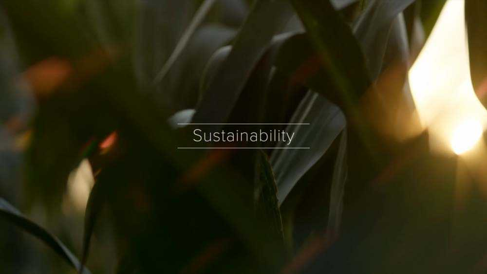 Sustainability this is farming
